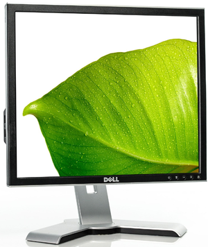 Cumpăra Monitor Dell UltraSharp 1907FP (Black)